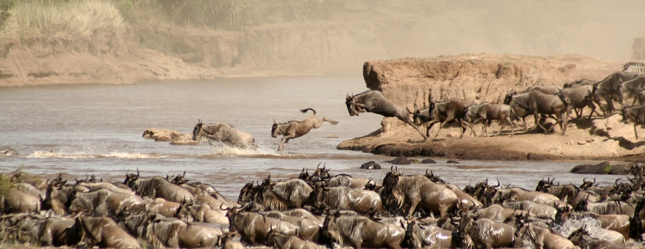 5 Days 4 Nights Masai Mara Safari Package